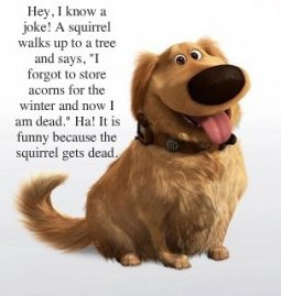 Squirrel joke